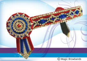 Red and royal blue diamond feature chain