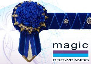 Royal blue carnations with sharkstooth and large crystals