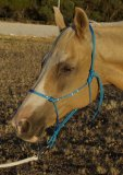 Bling Rope Halter - made to order