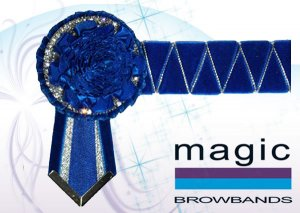 Royal blue and silver carnation