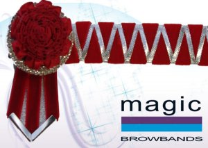Red and silver sharkstooth with carnation