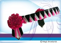 Hot pink, black and silver sharkstooth with carnations