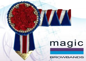 Royal blue, red, white and gold carnation