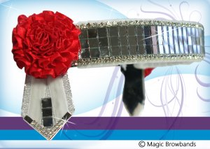White and red mirrors band with red carnations