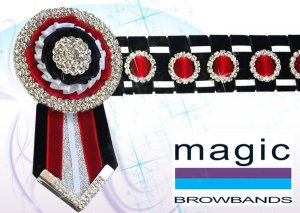 Black, red, white and silver checkerboard with smaller rosettes