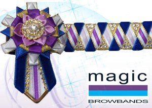 Purple, lilac, royal blue and white, size zag