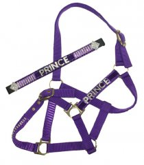 Bling name browband and matching halter set