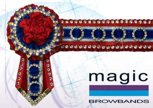 Red, white, royal blue with tiny rings and small carnations