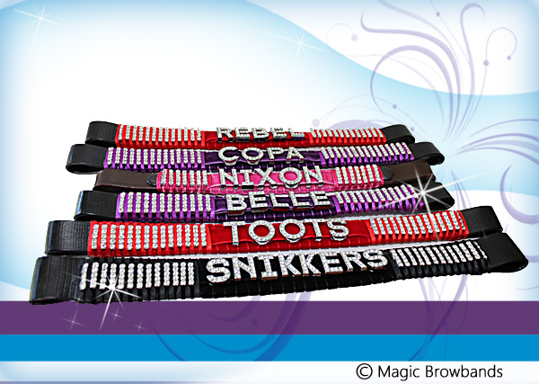 Bling name browbands - Click Image to Close